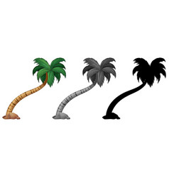set palm tree vector image