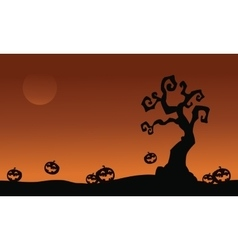 Halloween pumpkins and dry tree vector image