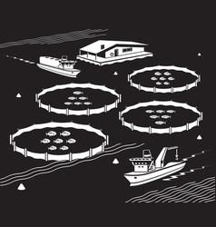 sea fish farm vector image