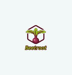 Beetroot vector