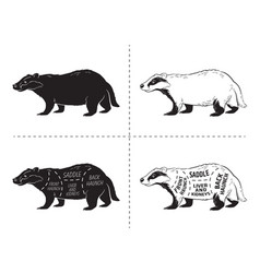 cut of badger set poster butcher diagram - desert vector image