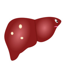 cute unhealthy liver with cysts in cartoon style vector image