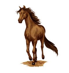 Horse animal running stallion racehorse vector