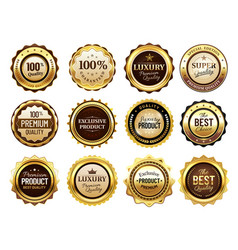 luxury golden badges premium quality stamp gold vector image
