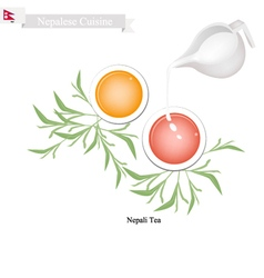 Rasbari or Nepalese Milk Ball With Sweet Syrup vector image