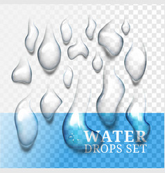 realistic drops of water with own shadow liquid vector image