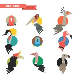 Exotic tropical bird set with flat design vector image vector image