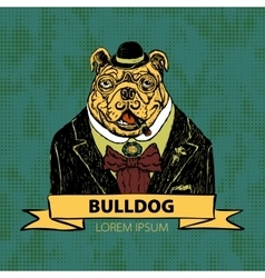 Hand Drawn Fashion of French Bulldog vector image vector image
