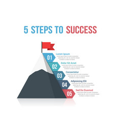 5 steps to success vector image