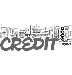 are you credit worthy text word cloud concept vector image