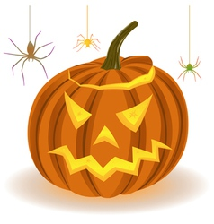 Halloween pumpkin and spiders on the web vector image