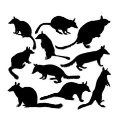 Numbat animal silhouettes vector