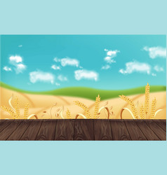 Oat fields realistic background mockup vector