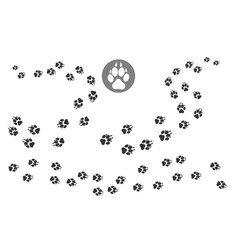 paw prints track pattern vector image