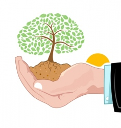natural tree growing on hand vector image vector image