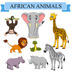cartoon african animals collection vector image