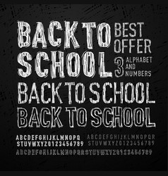 chalk font letters and numbers back to school vector image