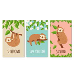 Lazy sloth cute slumbering sloths on branch vector