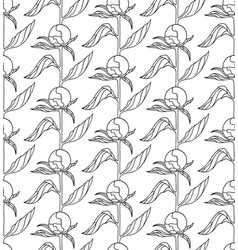 seamless pattern with peony buds vector image