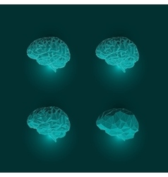 Set of Active Human Brains on Dark Background vector image
