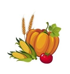 Harvest pumpkin stalks and tomato vector