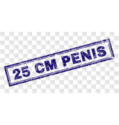 Grunge 25 cm penis rectangle stamp vector