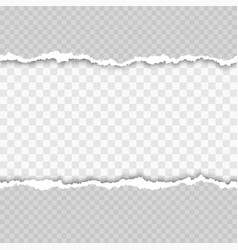 horizontal seamless torn white paper with shadow vector image