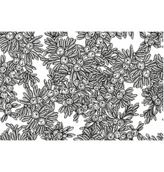 Juniper tree seamless pattern hand drawn vector