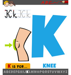 Letter k from alphabet with cartoon knee body part vector