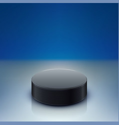 puck lying on rink vector image