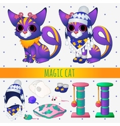 Purple magic cat with toys and winter clothing vector