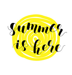 summer is here lettering vector image