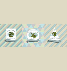 Three colored labels with monstera vector