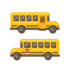 yellow school bus side views flat on white vector image