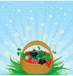 Summer harvest vector image vector image