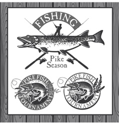 Vintage trout fishing emblems labels and design vector image
