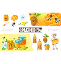 cartoon beekeeping composition vector image