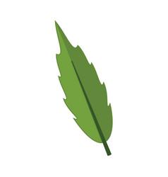 cartoon floral leaf graphic vector image