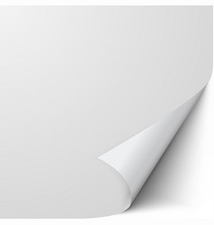 curled sheet paper empty blank paper with vector image