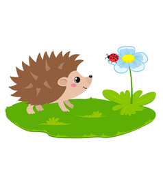 cute hedgehog and flower with ladybug vector image