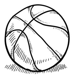 doodle basketball vector image