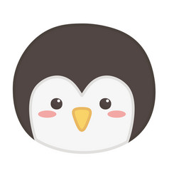 penguin face polar animal bird icon vector image
