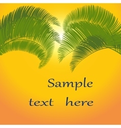 Leaves of palm tree on orange background vector
