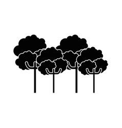 nature trees cartoon vector image