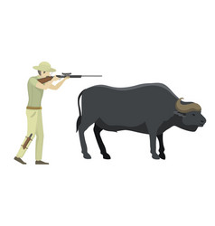bull farm animal safari hunter standing vector image