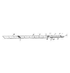 drawing ruler wide range of sizes vintage vector image