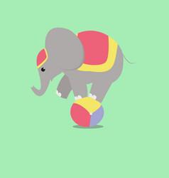 elephant on the ball vector image