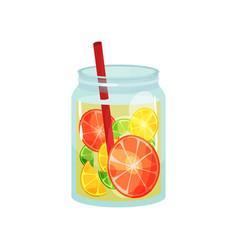 Fresh detox drink with slices of grapefruit lemon vector