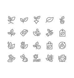 Line plants icons vector