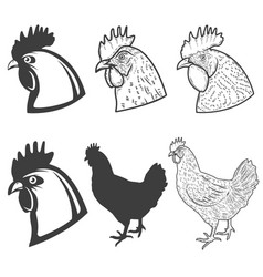 set chicken heads icons isolated on white vector image